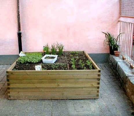 Orto sul terrazzo forum di for Cassoni per orto rialzato